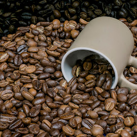 Coffee Beans by Jim Downey - Food & Drink Alcohol & Drinks ( studio, beans, coffee, close up, black )