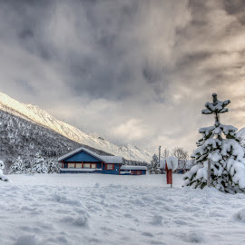 Cabin in winterland by Benny Høynes - Landscapes Prairies, Meadows & Fields ( canon, cabin, winter, landscape, daylight, norway )