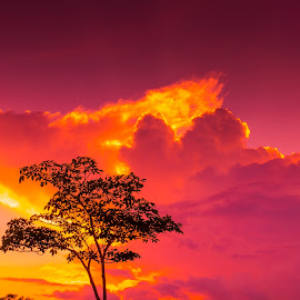 Burning Clouds by Thomas Ho - Landscapes Cloud Formations ( clouds, fury, sunset, fire, burning sky )