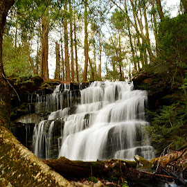 Silky Falls by Travis Houston - Landscapes Waterscapes