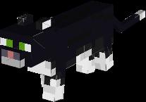 stampylongnose's cat, mittens!