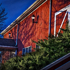 Winton Woods Riding Stables by Pat Lasley - Buildings & Architecture Other Exteriors ( park, architectual detail, barn, golden houur, stables )