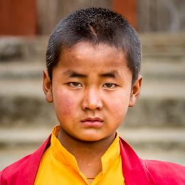 Young Lama by Amrita Bhattacharyya - Babies & Children Child Portraits (  )