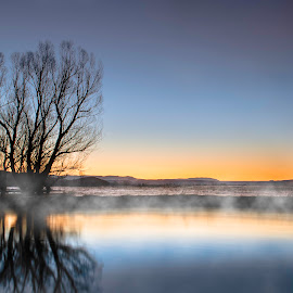 The tree by Dario Petrovic - Landscapes Sunsets & Sunrises ( foggy, skyline, sky, tree, blue, fog, beautiful, awsome, snow, lake, sunrise )
