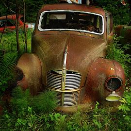 Rust Car by Susan Wicher - Transportation Automobiles ( car, nature, transportation, rust )