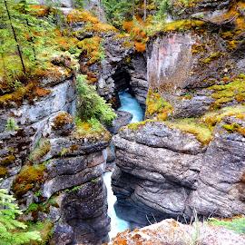 Rocky Mountain Crevice by Linda Doerr - Landscapes Mountains & Hills ( stream, mountain, rocky mountains, crevice, moss, landscape, rocks )