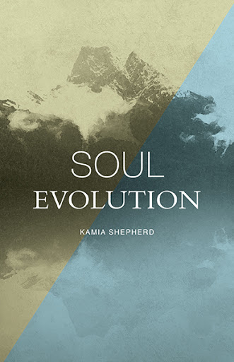 Soul Evolution cover