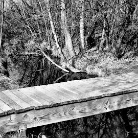 Old Foot bridge by Bruce Newman - Landscapes Prairies, Meadows & Fields