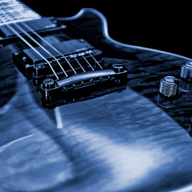 Les Paul by Mike Irschick - Artistic Objects Musical Instruments ( music, les paul, guitar, prophecy plus, epiphone )