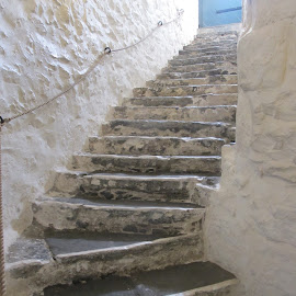 Stone steps by Vicki Clemerson - Buildings & Architecture Architectural Detail ( stone steps, stone staircase, staircase, curved steps, steps )