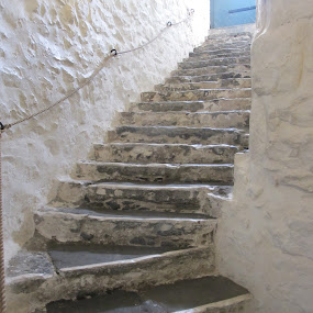 Stone steps by Vicki Clemerson - Buildings & Architecture Architectural Detail ( stone steps, stone staircase, staircase, curved steps, steps,  )
