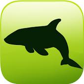 Free Download ARCOCEAN - ARC OCEAN AR APK for Samsung