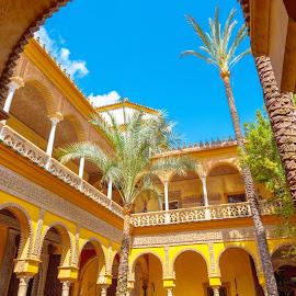patio palacio de Dueñas by Roberto Gonzalo Romero - Buildings & Architecture Public & Historical ( dueñas, sevilla, palacio )