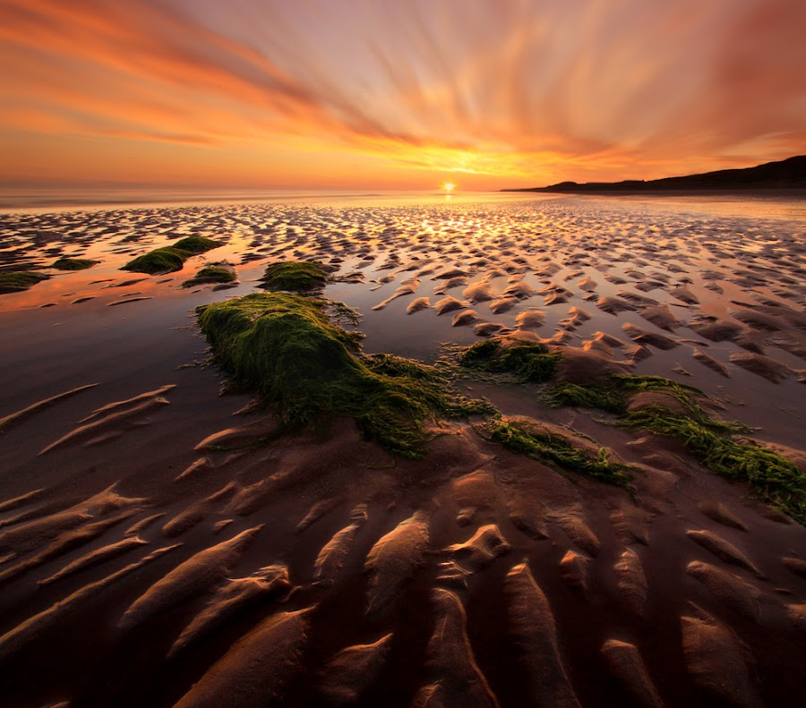 Seascale by Wolfy Pic - Landscapes Waterscapes