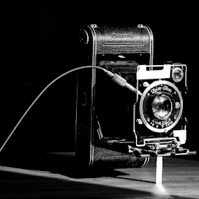 Ikon by Tigi Borg - Artistic Objects Other Objects ( camera, fine art, tigiphoto )