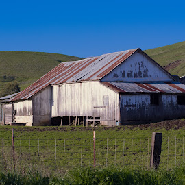 old barn on Lake Herman by John Rourke - Buildings & Architecture Other Exteriors ( 2017, ca, california )
