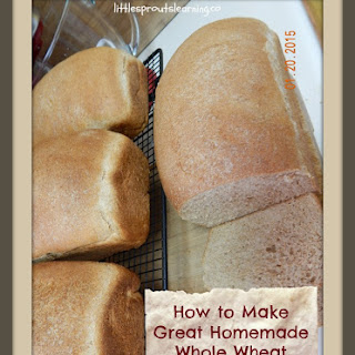 Everyday Whole Wheat Bread
