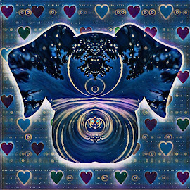 Celestial Dog Love by Gia Gee - Digital Art Animals ( dog love, celestial dog love, love a dog, virtual dog love, dog )