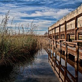 Bridge in the nature by Gianluca Presto - Buildings & Architecture Bridges & Suspended Structures ( clouds, laguna, reflection, lagoon, tuscany, wood, hdr, plants, reflections, lake, sky, nature, massaciuccoli, cloudy, bridge, pond, italy )