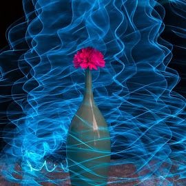 Light painting4 by Ivo Tunchel - Abstract Light Painting