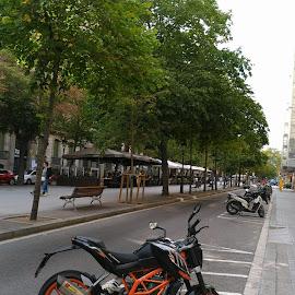 by Tiffany Wu - Transportation Motorcycles