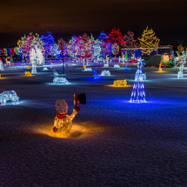 Christmas Celebration by Joseph Law - Public Holidays Christmas