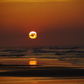 Topsail Island Sunrise by Kim De Quintal - Landscapes Beaches ( atlantic ocean, topsailislsand, beach, sunrise )