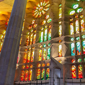 vidrieras sagrada familia, Barcelona by Roberto Gonzalo Romero - Buildings & Architecture Places of Worship ( gaudi, sagrada familia, barcelona, vidrieras,  )