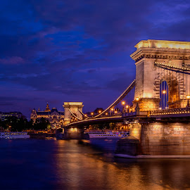 Chain Bridge by Luis Silva - Buildings & Architecture Bridges & Suspended Structures ( hungary, budapest, chain bridge, low light, night, long exposure, bridge )