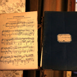 musicbook by Peet De Mos - Artistic Objects Musical Instruments ( music, old, songs, musicnotes, belgium )