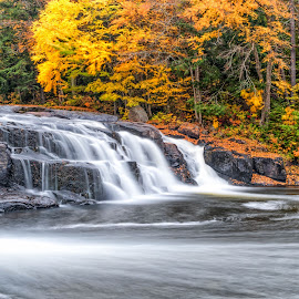 Buttermilk Falls by Kim Cochrane - Landscapes Waterscapes ( waterfalls, fall colors, trees, long exposure, new york, leaves )