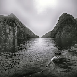 Milford Sound by Stanley P. - Landscapes Waterscapes
