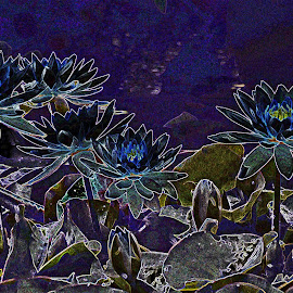 Monet Remembered by Reuss Griffiths - Abstract Light Painting ( green, water lilies, blue, purple, monet )