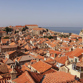 Red roofs of Dubrovnik by Dubravka Krickic - City,  Street & Park  Historic Districts ( famous, old, red, dubrovnik, roofs, croatia, sea, town, historic )