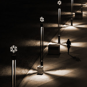 DSC_6879-Walking in the dark-Sepia.jpg
