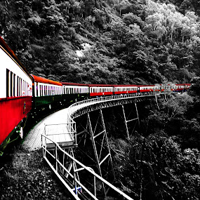 Contrast Train by Tiahn Anneliese - Transportation Trains