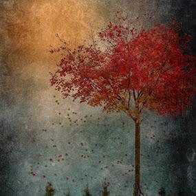 by Tina Bell Vance - Digital Art People ( fantasy, digital collage,  )