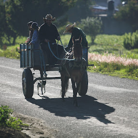 the family's car by Cristobal Garciaferro Rubio - Transportation Other ( family, donkey )