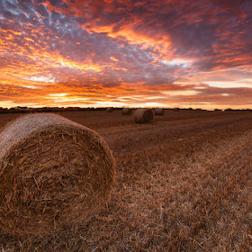 Straw Bales Sunset-3.jpg