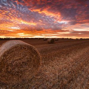 Straw Bales Sunset-3.jpg