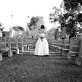 At the Bandshell, La Crosse, WI by Jo Brockberg - Wedding Other