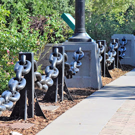 Bound By Chians by Nicholas Jex - City,  Street & Park  City Parks ( nature, beautiful, parks, chains, composition )