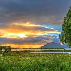 Sunset by Benny Høynes - Landscapes Prairies, Meadows & Fields ( hdr, sunset, summer, landscape, norway )
