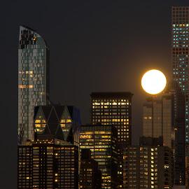 Blue Moon Over Manhattan, 7/31/15 by Judy Florio - City,  Street & Park  Skylines ( skyline, moon, full moon, night, manhattan, cityscape, blue moon, ny, hudson river )