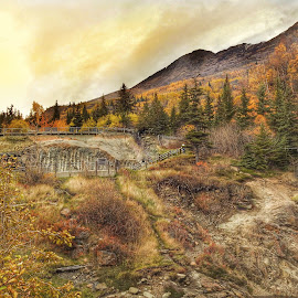 Let's Go Hiking by Patricia Phillips - Landscapes Mountains & Hills ( alaska mchugh hiking )