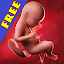 Download Android App Pregnancy week by week for Samsung