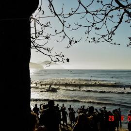 Ubatuba - Brazil Long Distance Triathlon by Marcello Toldi - Sports & Fitness Swimming