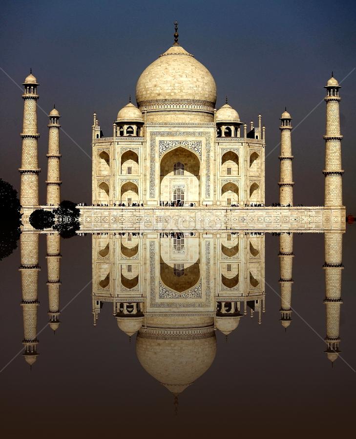 Taj Mahal by Debajit Bose - Buildings & Architecture Public & Historical ( love, taj, shahjahan, marbel, refelction, buildings, wonder, mumtaz, agra, india, architecture,  )