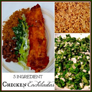 Chicken Enchiladas Recipe - Only 5 Ingredients!