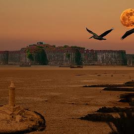 by Jaysinh Parmar - Digital Art Places
